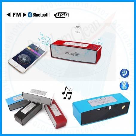 FM Bluetooth Music Speaker