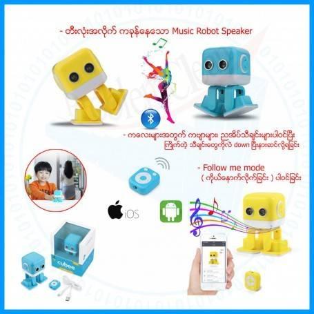 Intelligence Education Music Robot